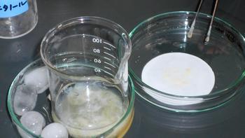 DNAの抽出実験